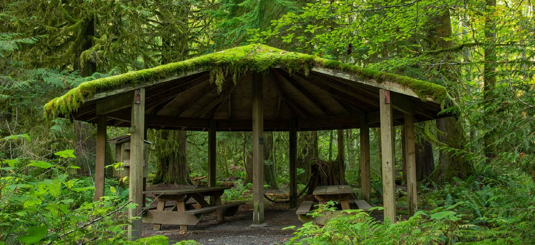 An Experiential Learning Workshop at Cheakamus Centre